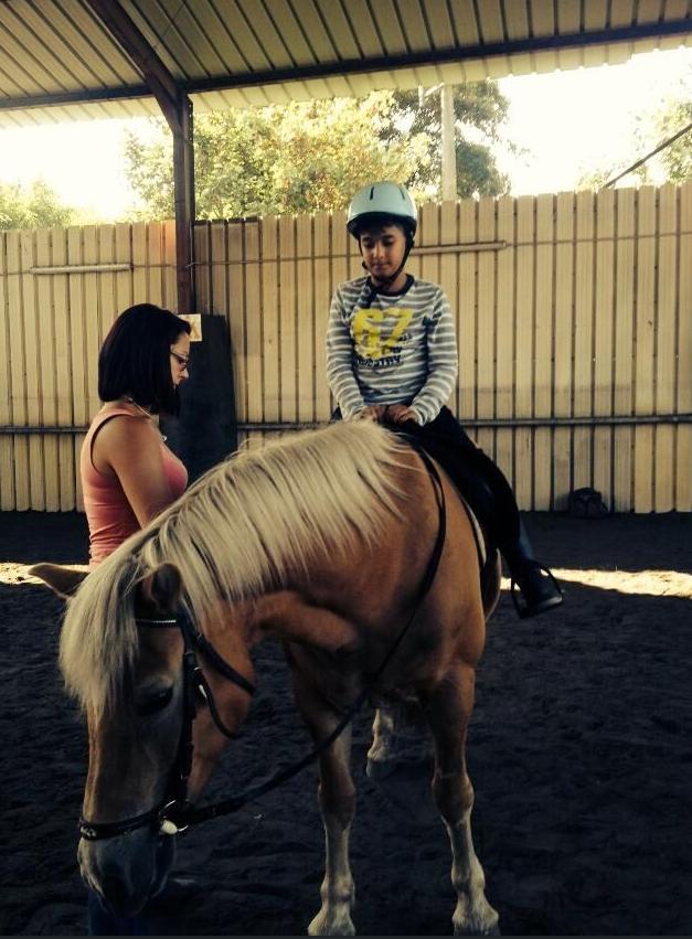 1000 equitation